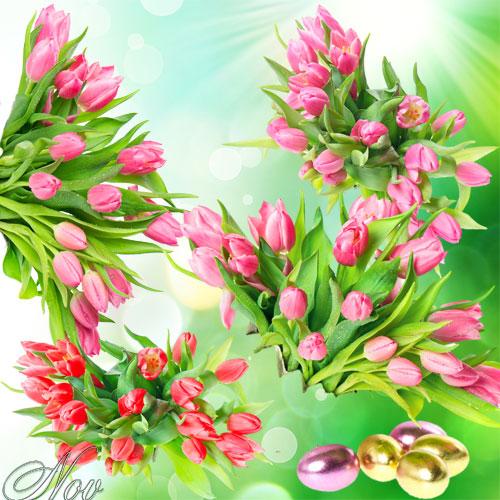 клипарт цветы бесплатно: