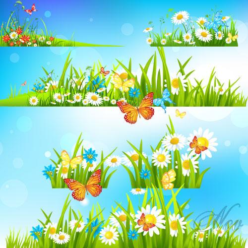 трава цветы фото: