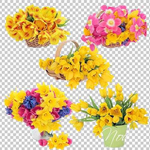 Клипарт нежные весенние цветы на