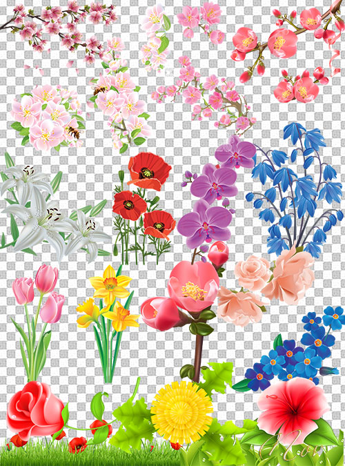 клипарт цветочки: